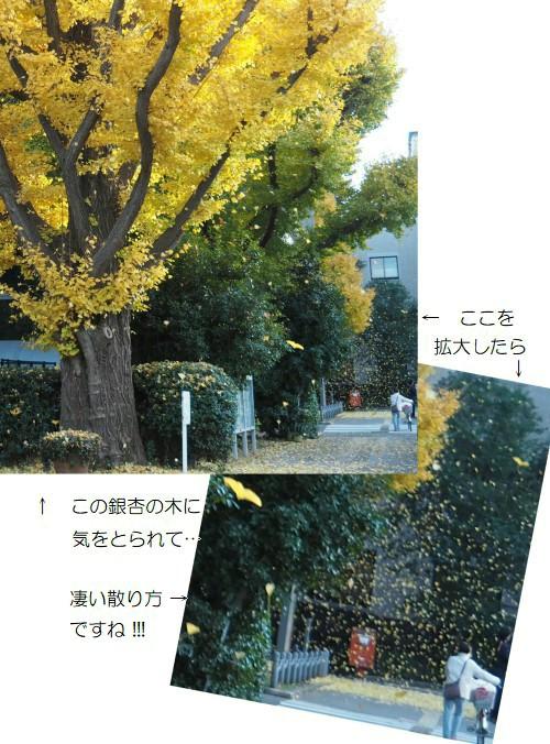 ちる-500TT.jpg