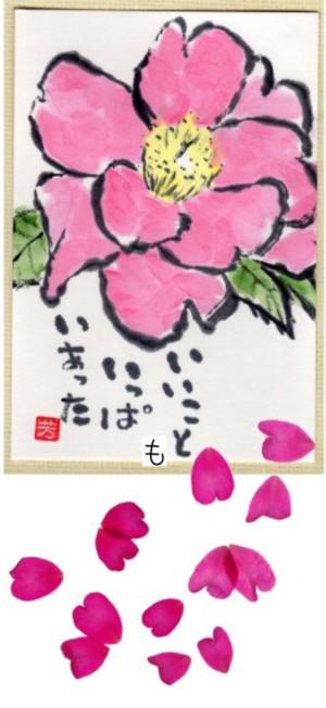 山茶花T -300.jpg