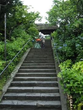 東慶寺 (6)-270.jpg