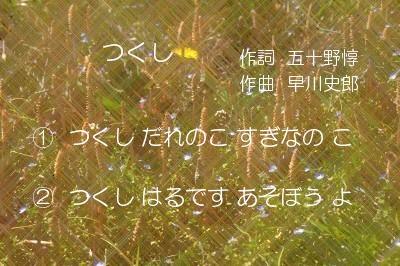 NR (67)K3T.jpg