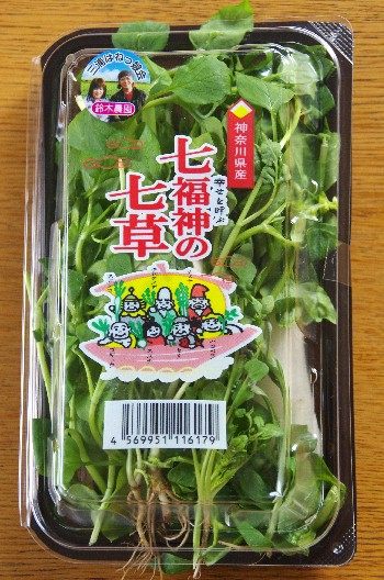 七草 (35)-350.jpg