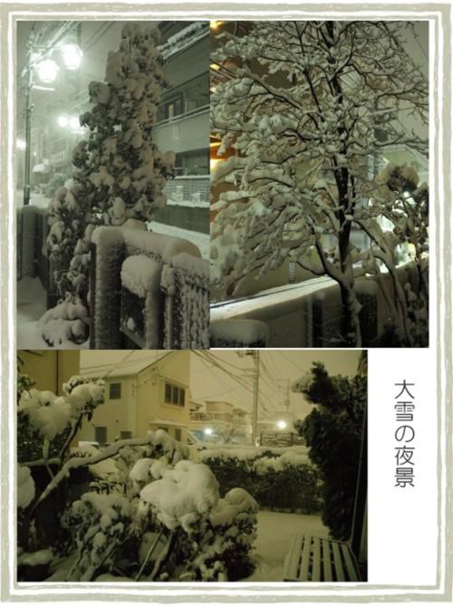 夜の雪-500T.jpg