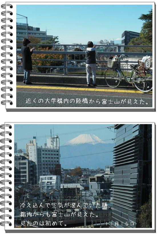 富士の山-550-8T.jpg