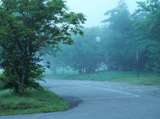 朝もや (3)-550.jpg