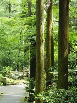 東慶寺 (127)-350.jpg