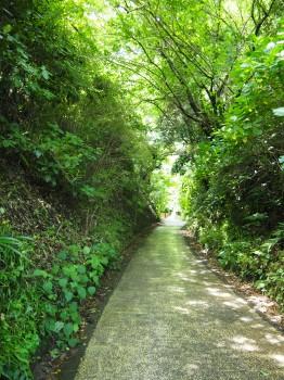 東慶寺 (173)-350.jpg