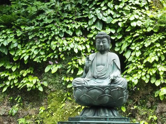 東慶寺 (89)-550.jpg