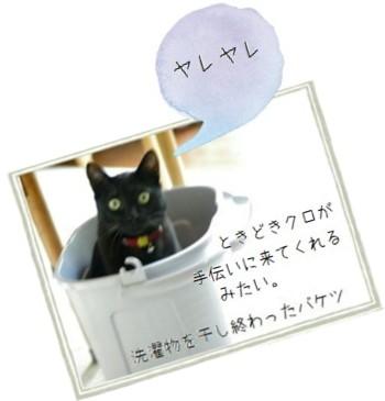 洗濯バケツ-350.jpg