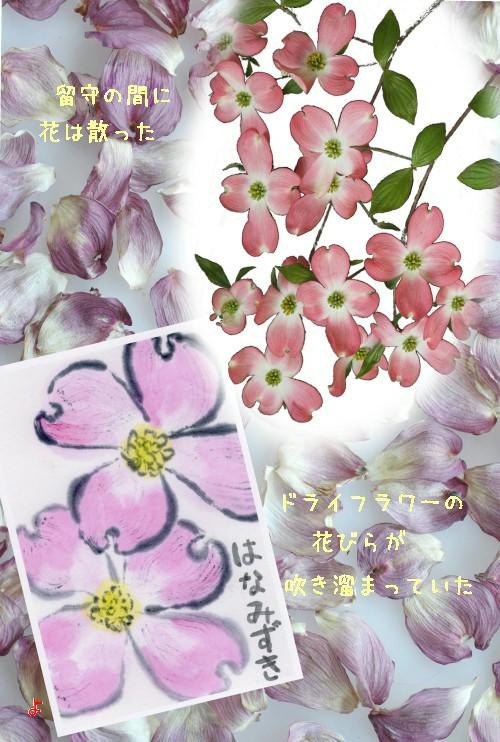 花ミ-500-6T.jpg