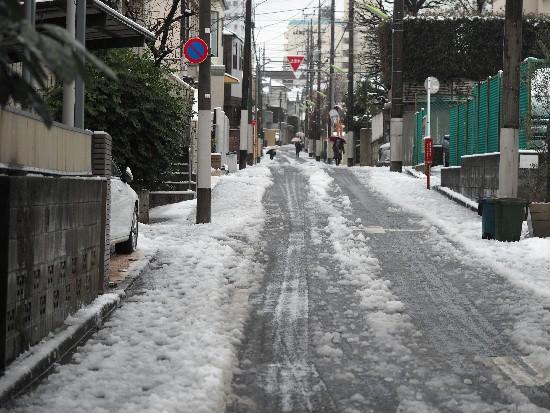 YUKI (2)-550.jpg